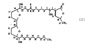 L'Acétogénine la molécule de l'agent actif anti-cancer de la feuille de corossol graviola